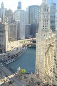 Beautiful views from the tribune tower