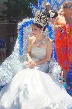 Blog 5 - Miss Continental Elite Michelle Fighter