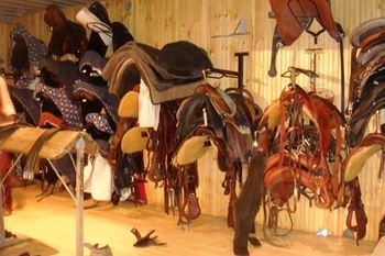Blog 9 - Cavalia Tack Room