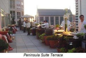 Blog 9 - Pen Suite terrace