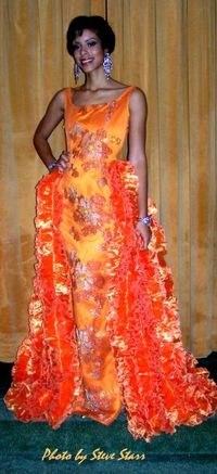 Blog 5 - orangefrothydress