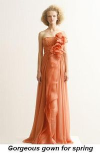 Blog 9 - Gorgeous gown for spring