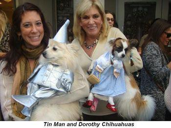 Blog 3 - Tin Man and Dorothy Chihuahuas