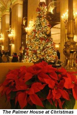 Blog 5 - The beautiful Palmer House at Christmas