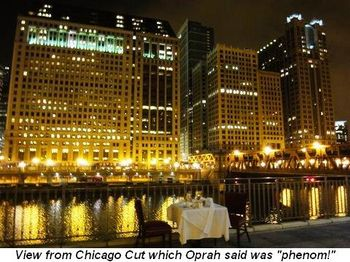 "Blog 5 - View from Chicago Cut which Oprah said was ""phenom!"""