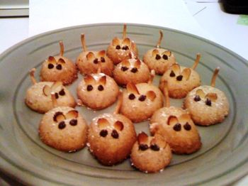 Mouse cookies photo