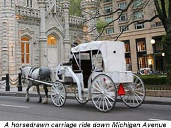 Horse_carriage_0331