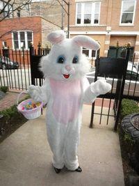 Easter Bunny Leslie Hindman DSC07904