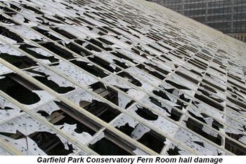 Blog 2 - Garfield Park Conservatory Fern Room hail damage