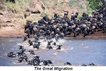 Blog 7 - the Great Migration