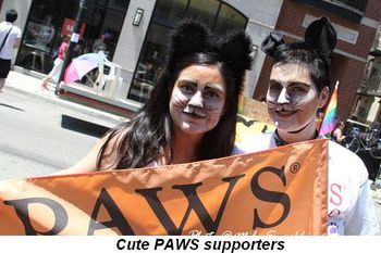 Blog 1 - Cute PAWS supporters