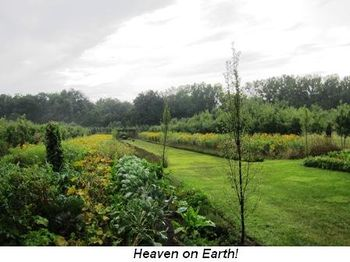 Blog 11 - Heaven on Earth!