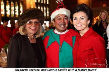 Blog 1 - Elizabeth Bertucci, Elf and Connie Saville