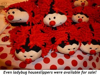 Blog 9 - Even ladybug houseslippers were available for sale!