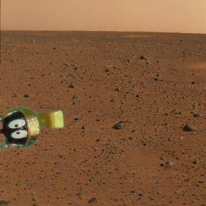 First pic from Mars