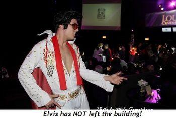 Blog 11 - Elvis has NOT left the building!