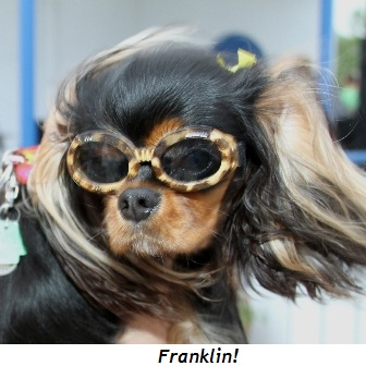 Blog 14 - Franklin
