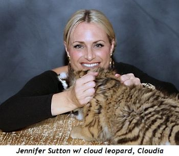 Blog 6 - Jennifer Sutton with clouded leopard, Cloudia