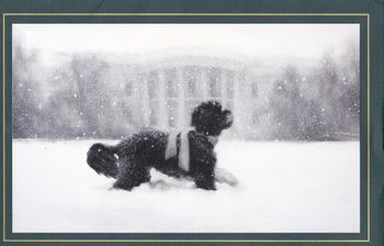 White House Christmas card 12-12-bo on front