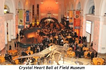 3 - Crystal Heart Ball at Field Museum