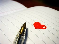 Write-what-you-love1