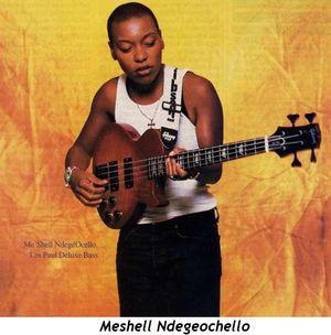 Meshell Ndegeochello