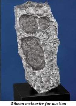 Blog 5 - Gibeon meteorite for auction