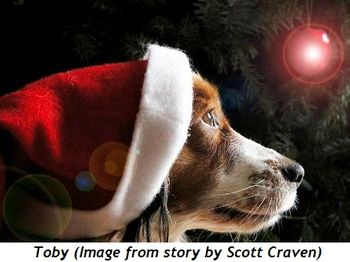 2 - Toby (Image from story by Scott Craven)
