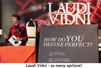 3 - Laudi Vidni—so many options!