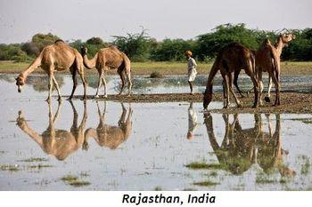 5 - Rajasthan, India