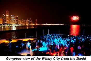 View of the city from the Shedd's terrace