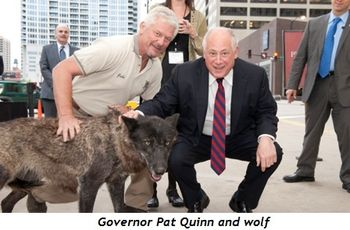 Governor Pat Quinn and wolf