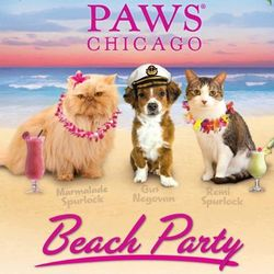 PAWS Beach Party 2013 invite image