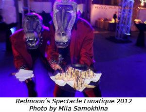 Spectacle Lunatique 2012 (Photo by Mila Samokhina)