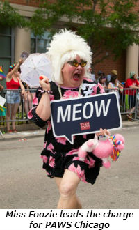 Miss Foozie leads the charge for PAWS Chicago