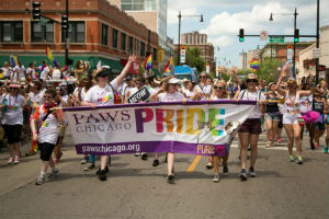 Paws Pride Marchers 2014