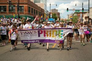 Paws Pride Marchers 2014