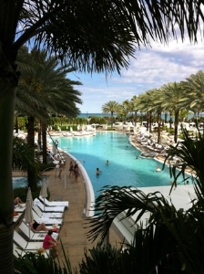 Paradise at one of 10 Fontainebleau pools.